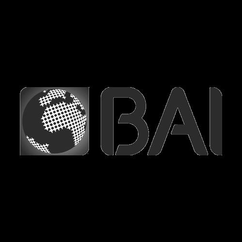 Banco Bai - Formação Empresarial