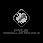 Logotipos - PKE - Consultoria Empresarial