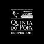Logotipos - Quinta do Popa - Consultoria Empresarial